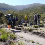 Summer hike up Kilimanjaro