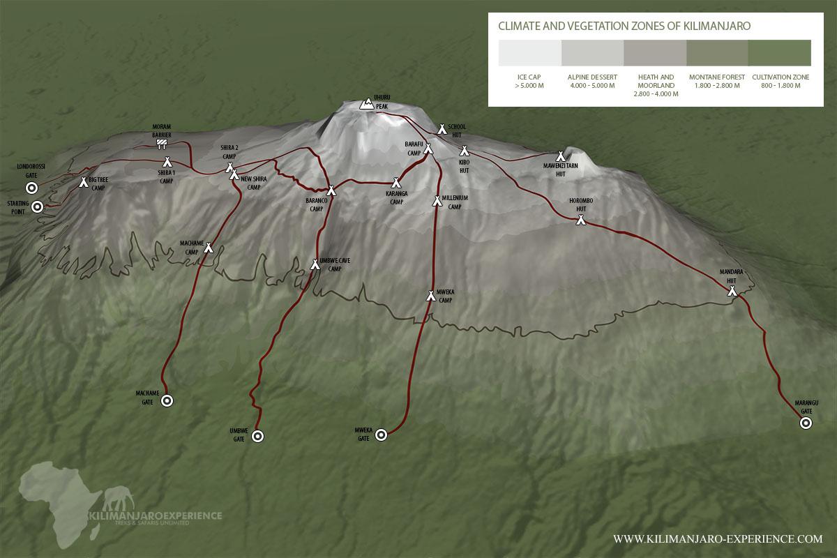 Kilimanjaro Tour Guides