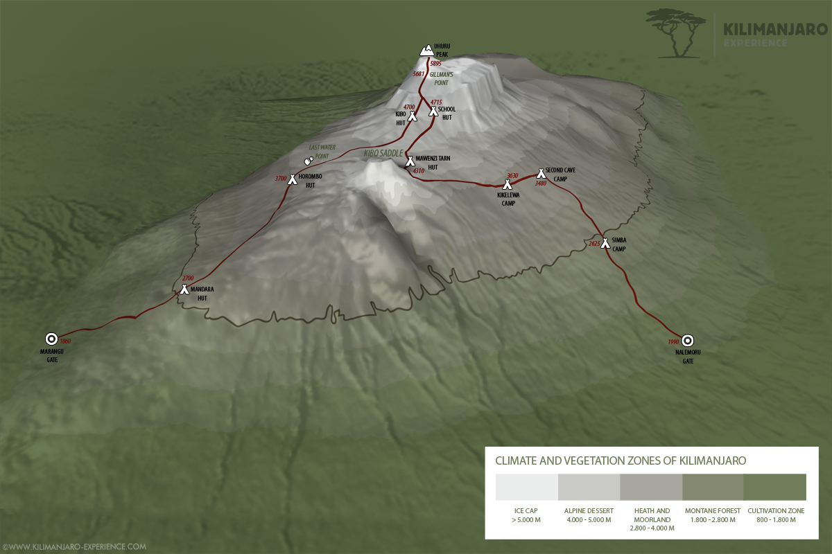 Rongai Route up Kilimanjaro